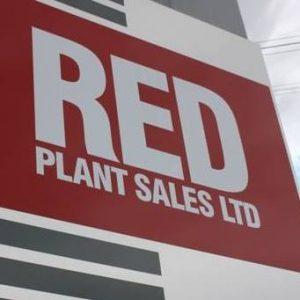 red_plant-sales